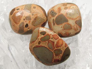 Onkolith (Leopardita) Trommelstein