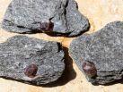 Granat-Glimmerschiefer Rohstein